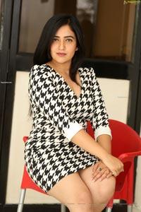 Supyardee Singh at Cheppina Evaru Nammaru Movie Press Meet