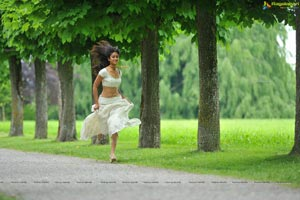 Indian Beauty Ileana in Devudu Chesina Manushulu HD Photos