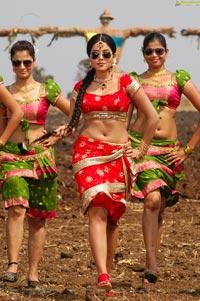 Asin look alike Poorna HD Photos