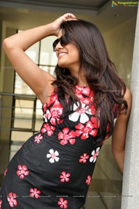 Gorgeous Tashu Kaushik Ragalahari Photos