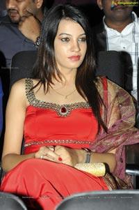 Photos of Diksha Panth at Hormones Audio Release