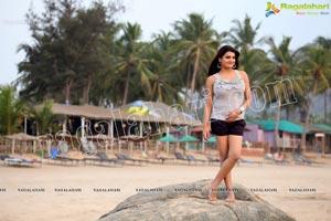 Tashu Kaushik Glamorous Photos