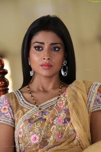 Azhagiya Tamil Magan Shriya Stills