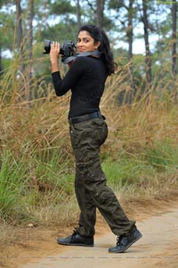 Download Amala Paul High Definition Stills