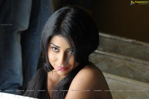 Shriya Saran High Definition Wallpapers
