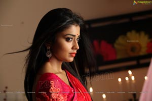 Hot Stills - Shriya Saran in Red Saree