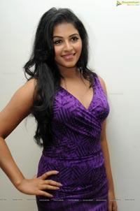 Anjali at Balupu Success Meet