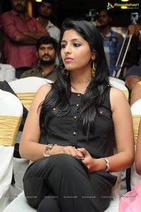 Kruthika Jayakumar Drushyam Success Meet