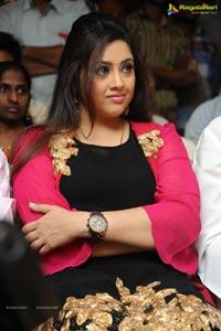 Meena Drushyam Success Meet