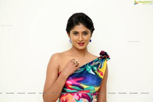 Neha Chowdary @ SIIMA Awards 2019 Curtain Raiser