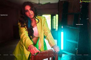 Nabha Natesh Ultra Bold HD Pictures