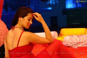 Lakshmi Rai Adhinayakudu Spicy High Definition Photos