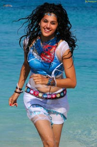 Sexy Taapsee in Daruvu - HD Wallpapers