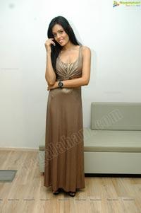 Hot Model Sadhana Singh at Audi Q3 Launch