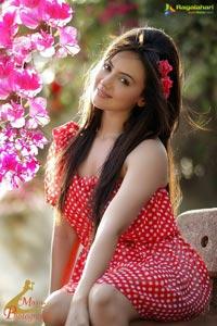 Sana Khan Portfolio Photoshoot