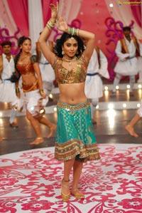 Beautiful Shriya draped in a Saree