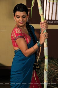 South Indian Heroine Tashu Kaushik in Saree