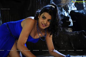 Tashu Kaushik Hot and Spicy Photos
