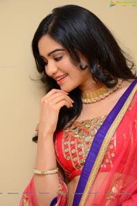 Telugu Actress Adah Sharma