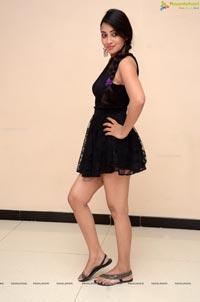 Bhanu Sri Telugu Heroine