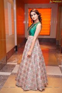 Nikitha Hyderabad Model