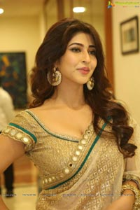 Sonarika Bhadoria Photos