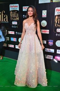 Shanvi Srivastava IIFA 2017