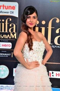Sonal Chauhan IIFA 2017