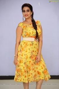 Manjusha Kanam Pre Release