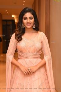 Anjali Nishabdham Pre Release Event