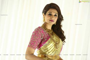 Shraddha Das in Traditional Attire
