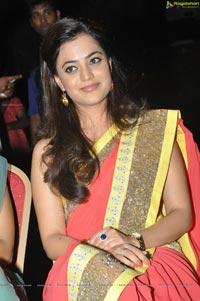 Nisha Aggarwal in Saree