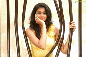 Tamil Actress Kamna Jethmalani Hot Photos