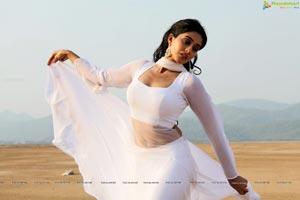 Regina in Shankara