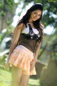 Shilpi Sharma Hot Stills