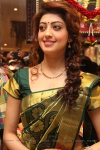RS Brothers Mehdipatnam Store Launched by Pranitha