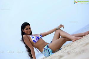 Shilpi Sharma in Green Signal
