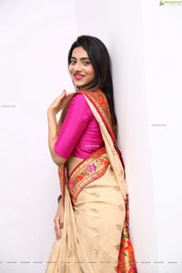 Dimple Thakur HD Stills in Traditional Saree