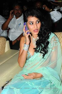 Anjali Lavania at Panjaa Audio Release