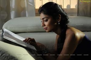 Kollywood Actress Shriya Saran