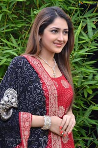 Sayesha Saigal Photos