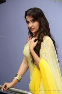 Manjusha Yellow Saree