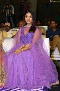 Actress Nivetha Pethuraj