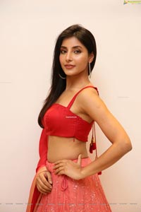 Harshita Gaur