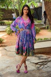 Lavanya Tripathi at Arjun Suravaram Success Meet