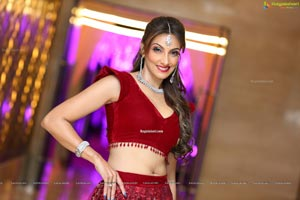 Pallavi Walia Raj at Shaadi by Marriott