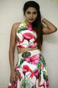 Sabina Jasmin at Clue Movie Trailer Launch