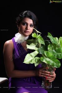Tashu Kaushik Birthday Shoot
