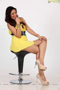 Exclusive Shilpi Sharma Photos