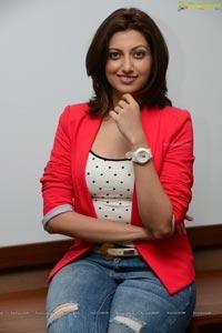 Hamsa Nandini